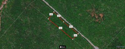 Narrowsburg Residential Lots & Land For Sale: (16) Nys 97
