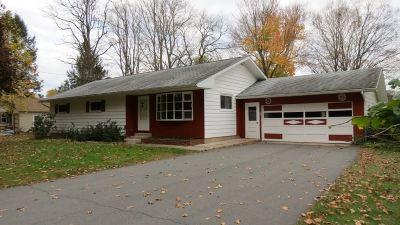 Narrowsburg Single Family Home For Sale: 159 Delaware Dr