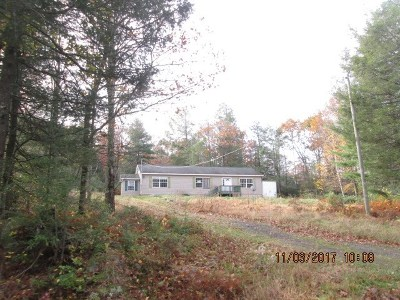 Mountaindale NY Single Family Home For Sale: $69,900