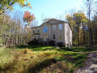 Rock Hill NY Single Family Home Under Contract: $167,000