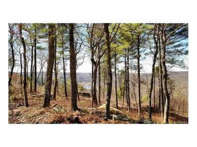 Narrowsburg Residential Lots & Land For Sale: Lot # 3 Eagles Nest Estates