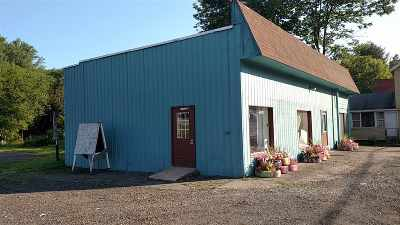 Jeffersonville NY Commercial For Sale: $149,900