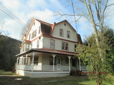 Livingston Manor, Roscoe Multi Family Home For Sale: 41 Riverside
