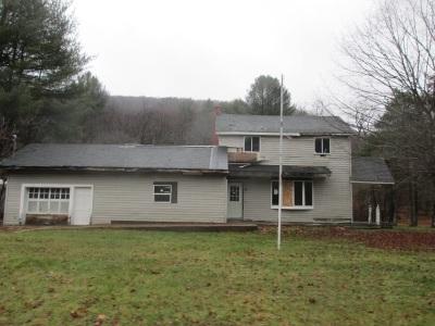 Roscoe NY Single Family Home For Sale: $23,500