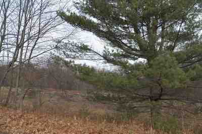 Residential Lots & Land For Sale: (1-1-1.2) Painter Hill Rd