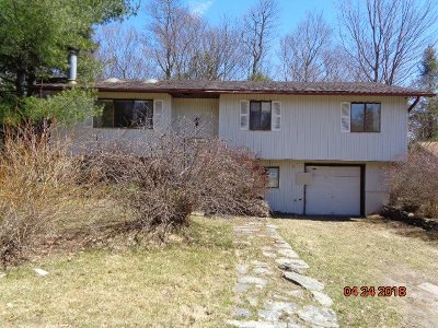 Loch Sheldrake NY Single Family Home For Sale: $39,900