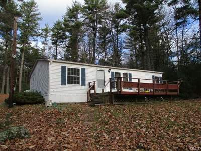 Highland Lake Single Family Home For Sale: 11 Hartung Road
