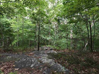 Glen Spey Residential Lots & Land For Sale: Lot 4 Caskey