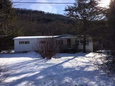 Downsville NY Single Family Home For Sale: $59,000