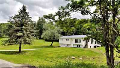 Hurleyville NY Single Family Home For Sale: $259,900
