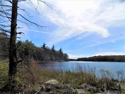 Wurtsboro NY Residential Lots & Land For Sale: $225,000
