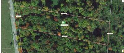 Bethel Residential Lots & Land For Sale: 13.4 Lt Brender