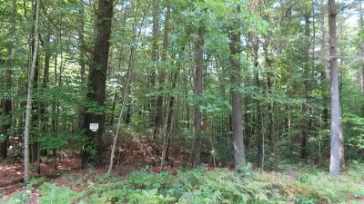 Narrowsburg Residential Lots & Land For Sale: Lot #8 Perry Pond Road
