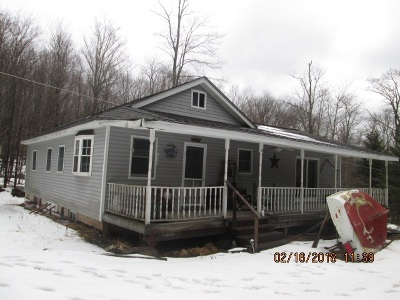Roscoe NY Single Family Home For Sale: $180,000