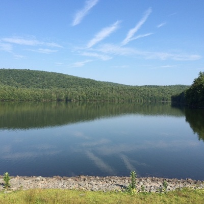 Glen Spey Residential Lots & Land For Sale: Lot 4.9 Rio Dam Rd