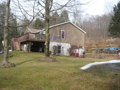 Roscoe NY Single Family Home For Sale: $315,000