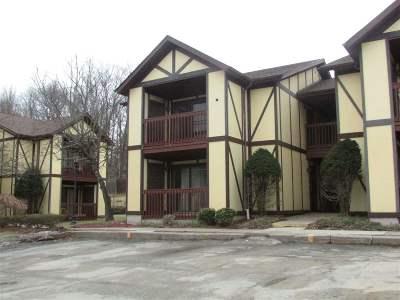 Woodridge Village NY Condo For Sale: $49,900