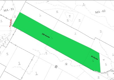 Residential Lots & Land For Sale: 66.-1-31 Pine Kill Rd