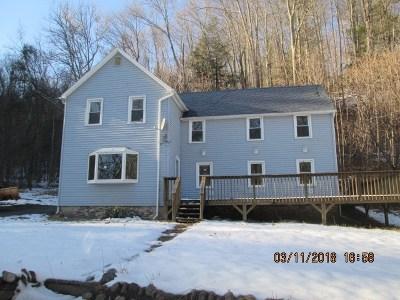 Neversink, Grahamsville, Denning Single Family Home For Sale: 615 Sundown Rd