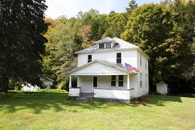 Sullivan County Single Family Home For Sale: 691 North Branch Hortonville Road