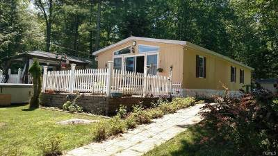Single Family Home For Sale: 204 W Mohican Trail