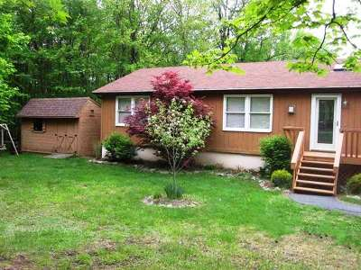 Swan Lake NY Single Family Home For Sale: $139,000