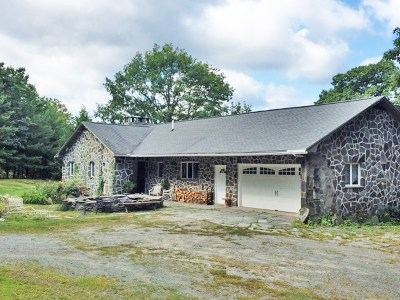 Narrowsburg Single Family Home For Sale: 7737 Nys Route 97