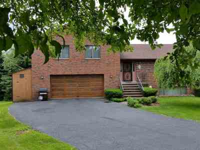 Callicoon Single Family Home For Sale: 15 Villa Roma Road