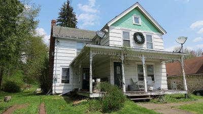 Single Family Home For Sale: 6598 State Route 52
