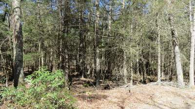 Residential Lots & Land For Sale: Lot #16 Perry Pond Road