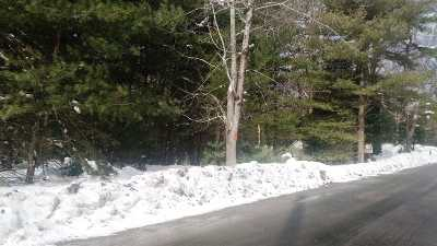 Residential Lots & Land For Sale: Yankee Lake Road