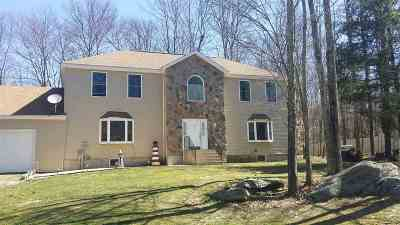 South Fallsburg Single Family Home For Sale: 11 Dog Patch