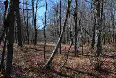 Livingston Manor NY Residential Lots & Land For Sale: $39,900