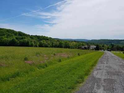 Livingston Manor NY Residential Lots & Land For Sale: $109,900