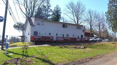 Bethel Multi Family Home For Sale: 3545 State Route 55