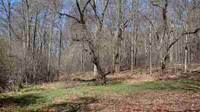 Residential Lots & Land For Sale: 4564 State Route 52