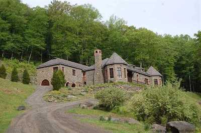 Sullivan County Single Family Home For Sale: 414 Painter Hill Road