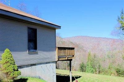 Livingston Manor, Roscoe Single Family Home For Sale: 30 Yorktown Road