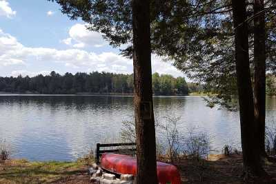 White Lake Single Family Home For Sale: 246 Deer Meadow Rd
