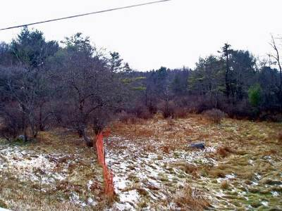 Bethel Residential Lots & Land For Sale: 18.12, 13 Nys Rt. 17b