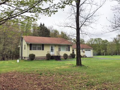 Ferndale NY Single Family Home For Sale: $175,000