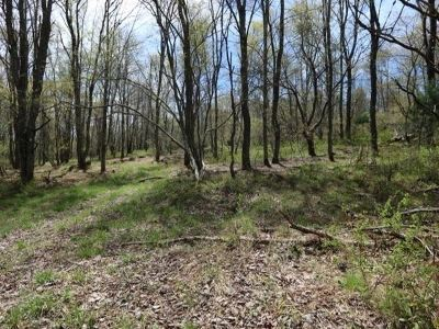 Residential Lots & Land For Sale: 11.-2-12 Benton Hollow
