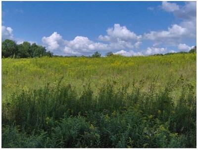 Residential Lots & Land For Sale: Menderis Road