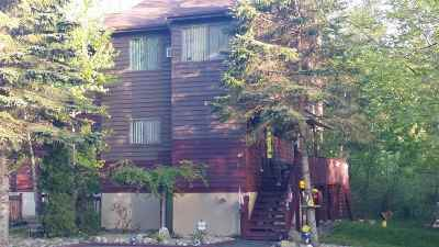 Woodridge NY Townhouse For Sale: $99,000