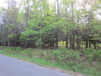 Residential Lots & Land For Sale: Lot 9 Murphy Rd
