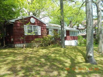 Single Family Home For Sale: 63 Merrick Avenue