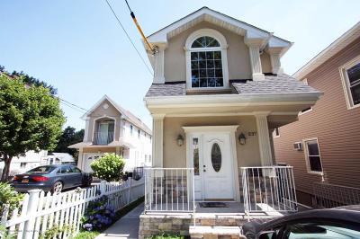 Single Family Home For Sale: 237 Castleton Avenue