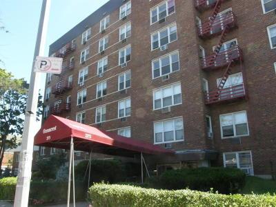 Brooklyn Co-op For Sale: 2373 Ocean Parkway #3 K