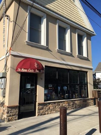 Staten Island Business Opportunity For Sale: 38 Androvette Street