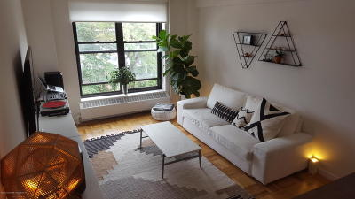 Kings County Rental For Rent: 193 Clinton Avenue #9d